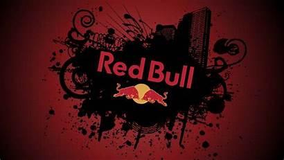 Bull Wallpapers Cool