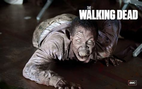 The Walking Dead Wallpaper And Background Image 1440x900