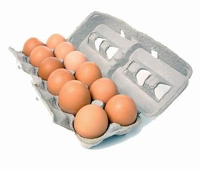 Eggs Dozen Organic Brown Egg Range 600g