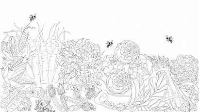 Coloring Produce Spring Guide Uncolored Weiner Jessie