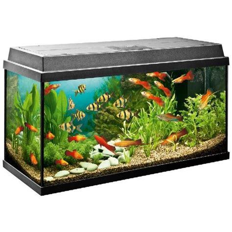 juwel primo 110 aquarium
