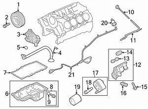 2013 Ford F-150 Engine Oil Drain Plug Gasket  Liter  Sohc  Valve