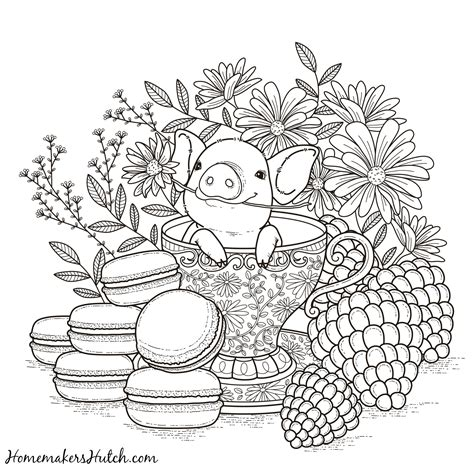 coloring pages  links