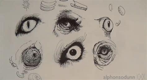 draw animal eyes video draw central