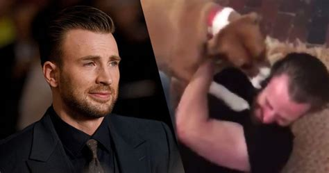 Chris Evans Reunites With His Dog Dodger And It Was Pure ...