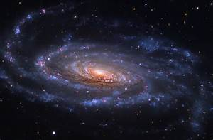 Astronomy Picture of the Day -- Spiral Galaxy NGC 5033
