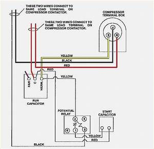 55 New Potential Relay Wiring Diagram