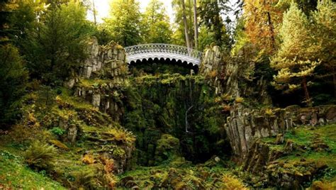 Flora of the Black Forest | VBT Bicycling Vacations Blog