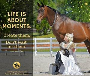 30 Success Quot... Horse Owning Quotes