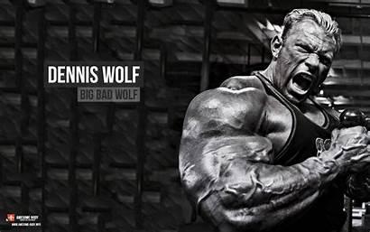 Bodybuilding Wallpapers Wolf Building Dennis Desktop Powerlifting