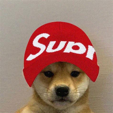 Supreme Doggo Funny Dogs Doggo Dogs