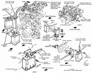 Ford Ranger Evaporative System Diagram  Ford  Free Engine