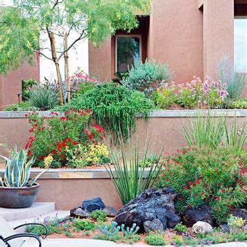 easy care plants for landscaping 54 best images about desert landscaping ideas on pinterest gardens deserts and yards