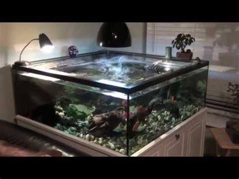 comment faire un aquarium pour tortue d eau