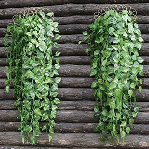 Plante Suspendue Intérieur : pot mural pour plante interieur digpres ~ Teatrodelosmanantiales.com Idées de Décoration