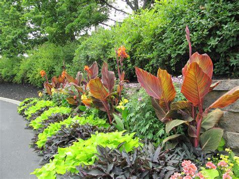 tropical plants landscaping ideas tropical landscaping garden ideas for home yard designtilestone com