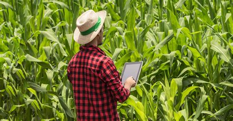 farmers  social media american family insurance