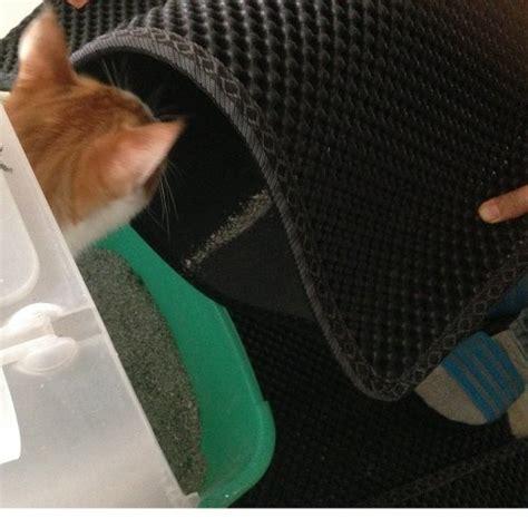 black cat litter mat desertcart