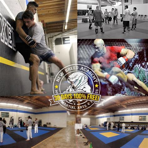 days  mma classes jiu jitsu muay thai