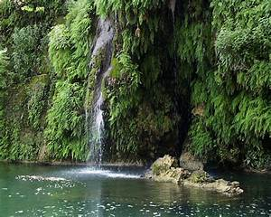 Index of /users/bump/images/Krause Springs