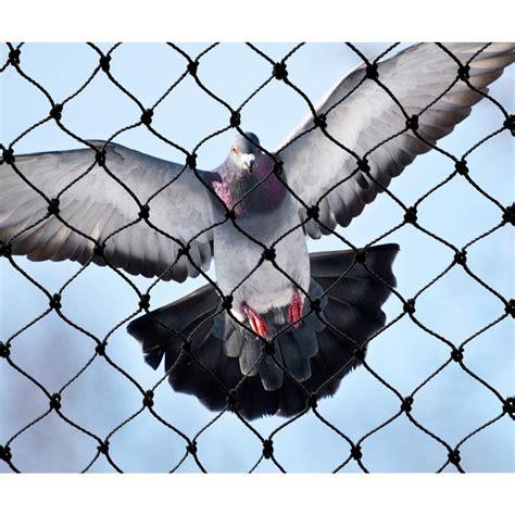 bird x 25 ft x 25 ft heavy duty bird netting net pe 25