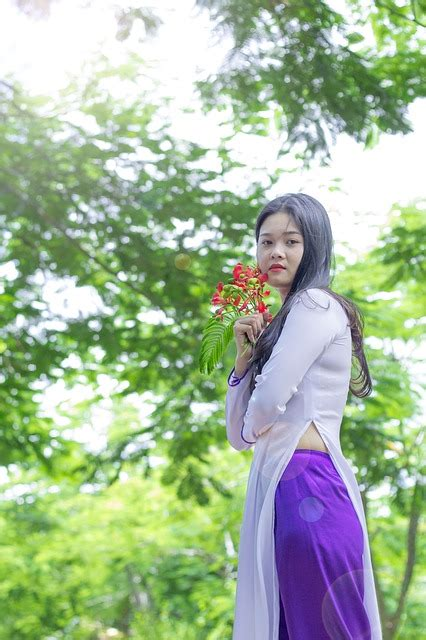 vietnam dress ao dai girl  photo  pixabay