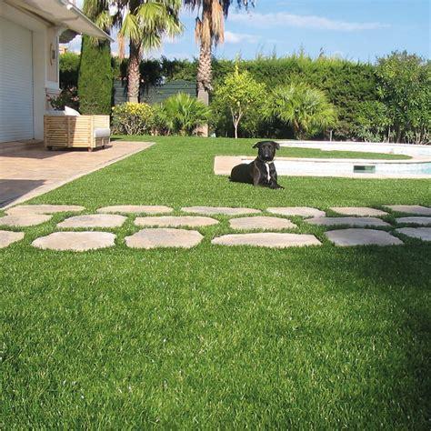 erbetta per giardino erba artificiale per cani e gatti effetto ultra reale