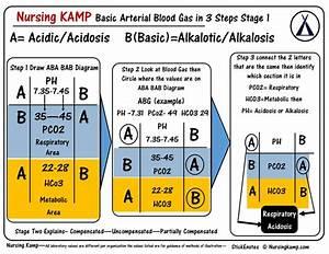 1806 Best Nursing Reference  U0026 Resources Images On