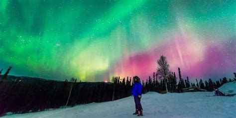 when to see the northern lights get mesmerized with the northern lights of alaska found