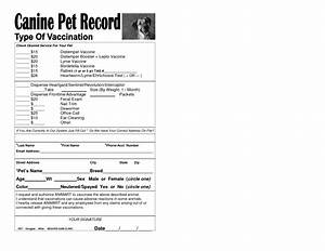 6 best images of free printable dog vaccination chart With dog health record template