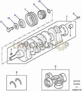 Crankshaft  U0026 Bearings - 300tdi
