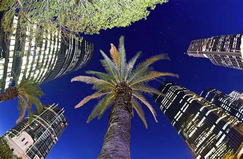 dubais  net  building codes  boost cleantech