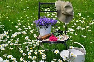Blumen Im Garten : garten stuhl wiese blumen stockfoto 9560430 bildagentur panthermedia ~ Bigdaddyawards.com Haus und Dekorationen