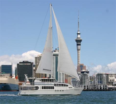 Catamaran Nz by Catamaran Charter Yacht New Zealand Marine Brokers