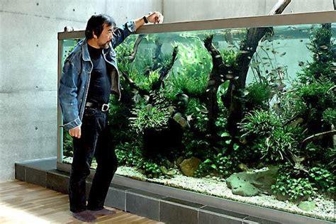 takashi amano aquascaping techniques nature aquarium takashi amano aquarium architecture