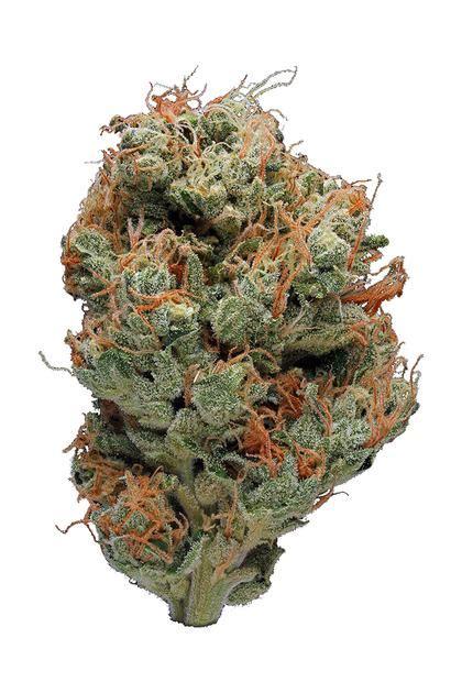 east coast sour diesel sativa cannabis strain review