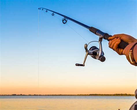 fishing rod stock  pictures royalty