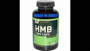 What Is Hmb  - Supplement Review