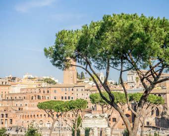 Fori Imperiali Ingresso Visitare Rome Scopri Gli Itinerari Italy Travels Tours