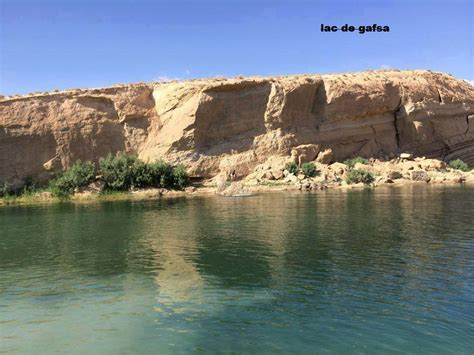 gafsa beach fears  phosphate poisoning  hundreds swim