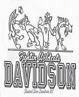 Davidson Special Coloring College Artifact Wildcats Fightin Decal Students sketch template