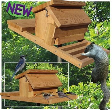squirrel proof bird feeder woodworking plan