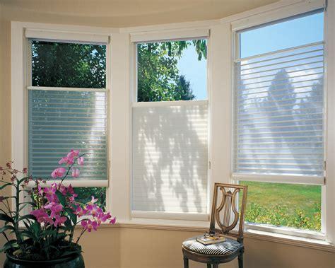window treatment trends  hawaii