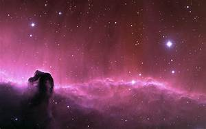 Horsehead Nebula Hubble Telescope (page 3) - Pics about space