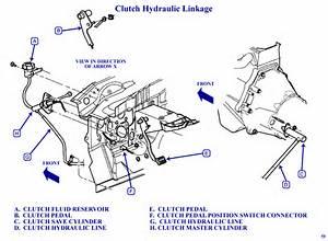 I Have 1998 Dodge Dakota 2 5 Manual Trans 5 Speed Ok When