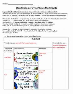 Classification Of Living Things Study Guide Answers