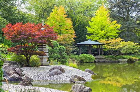 Japanische Garten In Bonn by Top 10 Places To See In Bonn Germany Places To See In