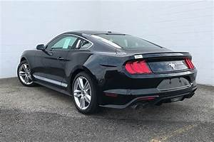 New 2020 Ford Mustang EcoBoost Premium 2D Coupe in Morton #117984 | Mike Murphy Ford