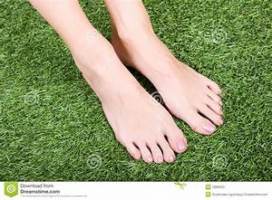 Beautiful Slim Female Feet On Green Grass Stock Image