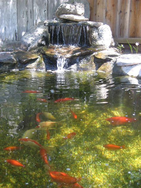 waterfalls for fish ponds koi pond waterfalls outdoortheme com